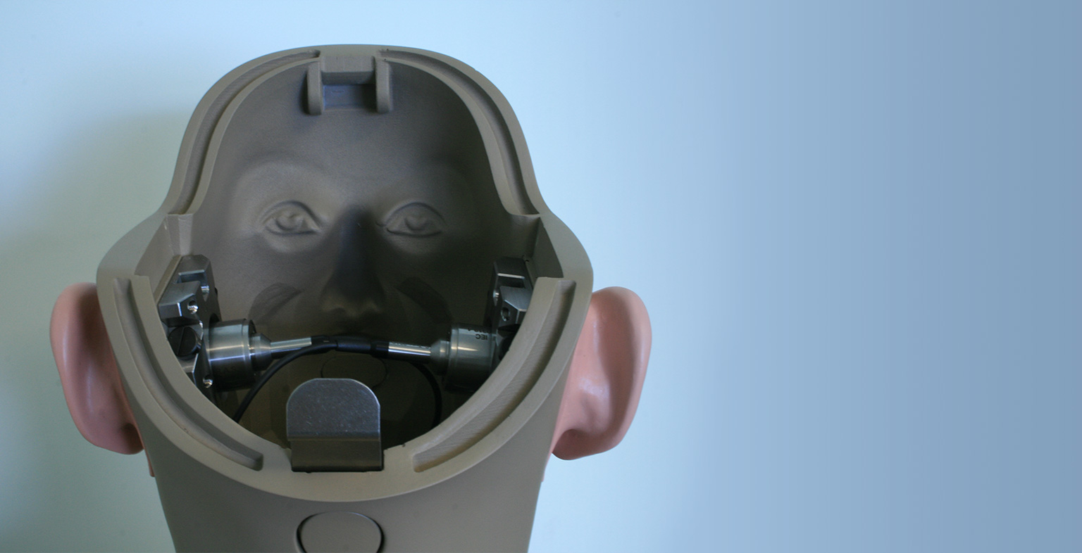 image of head with back missing and ears on the side with a blue wall in the background
